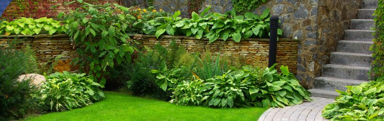 Jones Landscaping Lawn Services, Better Lawns And Gardens Little Rock